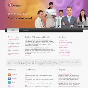 theme wordpress deleget