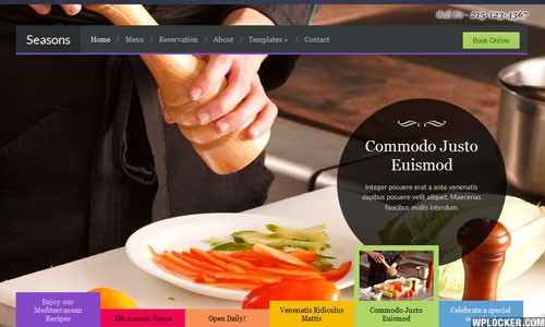 theme wordpress dep