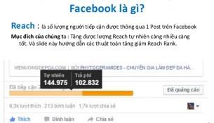 reach-tren-facebook-la-gi