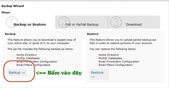 tao-backup-hosting-cpanel-1-compressed